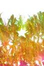 Holiday background, beautiful shiny Christmas Royalty Free Stock Photo
