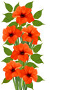 Holiday background with orange beautiful flowers vector illustration Royalty Free Stock Photo
