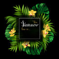 Holiday Banner With Tropical P...