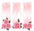 Holiday banners with pink beautiful roses vector Stock Photos