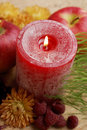 Holiday Candle Centerpiece Royalty Free Stock Photos