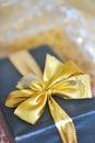 Holiday gift box Royalty Free Stock Image