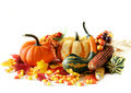 Holiday Harvest Royalty Free Stock Images