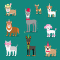 Holiday illustration for a party or birthday. Dogs in caps. Children`s stylized picture. Royalty Free Stock Photo