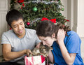 Holiday Kitty Cat Stock Photo