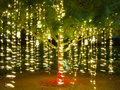 Holiday light strings in tree long exposure shot of of lights hanging on a swinging at a gentle breeze on a summer night australia Royalty Free Stock Image