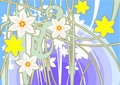 Holiday narcissus Royalty Free Stock Photos