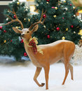 Holiday reindeer statue Stock Image