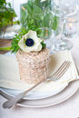 Holiday table setting Royalty Free Stock Photos