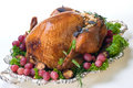 Holiday turkey on white Royalty Free Stock Images