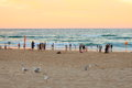 Holidaymakers at beach by sunset summer evening scene a popular gold coast strip australia whith people enjoying their holiday Stock Image