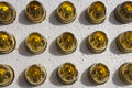 Hollow point bullets lined up ready to load Royalty Free Stock Image