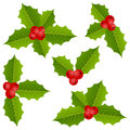 Holly berry christmas collection Stock Afbeeldingen