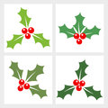 Holly berry collection vector illustration Royalty Free Stock Photos