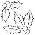 Holly berry sprigs. Black and white coloring book page