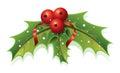 Holly Christmas Royalty Free Stock Photo