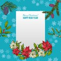 Holly, fir and poinsettia. Christmas and New Year greeting card Royalty Free Stock Photo