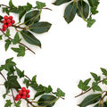 Holly and Ivy Border Royalty Free Stock Images