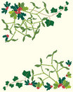 Holly and mistletoe Stock Image