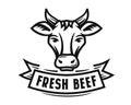 Holstein cow portrait Royalty Free Stock Photo