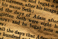 Holy bible close up of Royalty Free Stock Images