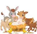 Holy child with animals donkey lambs goat and calf Stock Photography