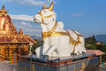 Holy cow statue sit in front of The statue of Lord Shiva at Siddhesvara Dhaam in Namchi. Sikkim, India Royalty Free Stock Photo