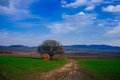 Holyland Series - Golan Heights meadow Royalty Free Stock Photos