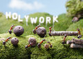 Holywork hills teamwork ant tales ants at Royalty Free Stock Image