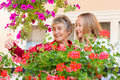 Home care elderly women shows her flowers to her assistant Royalty Free Stock Photos