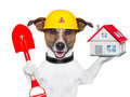 Home dog builder holding a small house and a red shovel Royalty Free Stock Images