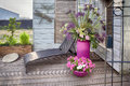 Home flowers terrace evening by with pots Stock Photo