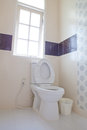 Home flush toilet Stock Photos