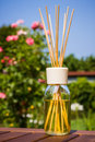 Home fragrance diffuser with sticks outside in a garden Stock Image