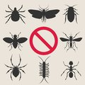 Home insect pests