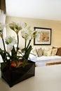 image photo : Home interior