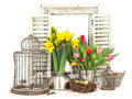 Home interior with spring flowers easter eggs tulips and narcissus bouquet fresh and Stock Images