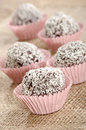 Home made chocolates of dark chocolate homemade and fine grated coconut Royalty Free Stock Photos