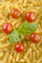 Home made noodle and tomato basil Royalty Free Stock Photography