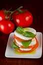 Home made salad slices fresh mozzarella organic tomatoes basil olive oil served white plate vine ripe tomatoes background Royalty Free Stock Photography