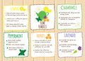 Home remedies infographics. Natural healers, natural self made cures. Self help recipes with fruits and herbals