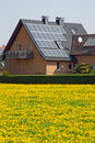 Home with solar panels and yellow dandelion Stock Images