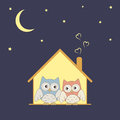 Home sweet home cute owls couple in their cozy nest under stars Royalty Free Stock Photography