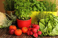 Homegrown herbs and vegetables from garden Stock Photography