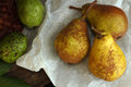 Homegrown pears from rural garden on paper and two walnuts over on wooden table Royalty Free Stock Photography