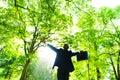 Homem de negócios relaxation nas madeiras Fotografia de Stock