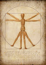 Homem de Vitruvian (uma capitulação moderna) Imagens de Stock Royalty Free