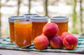 Homemade apricot jam or preserves jars of Royalty Free Stock Photos