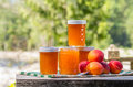 Homemade apricot jam or preserves jars of Royalty Free Stock Photography