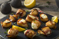 Homemade Bacon Wrapped Scallops Royalty Free Stock Photo